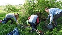 Sprzątanie Łubowic