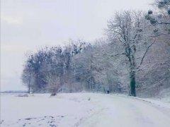 zima-styczen2021-12.jpg