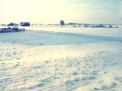 zima-styczen2021-16.jpg