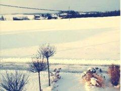 zima-styczen2021-17.jpg