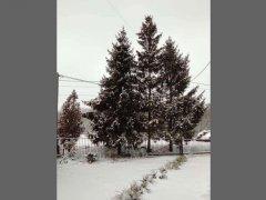 zima-styczen2021-36.jpg