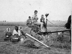 lipiec 1937, prace w polu